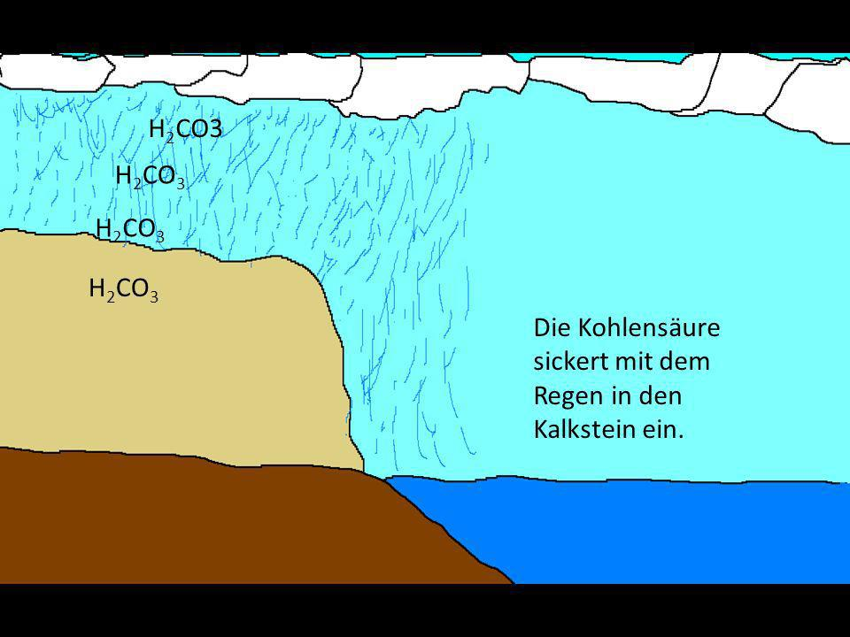 H 2 CO3 Die Kohlensäure sickert mit dem Regen in den Kalkstein ein.