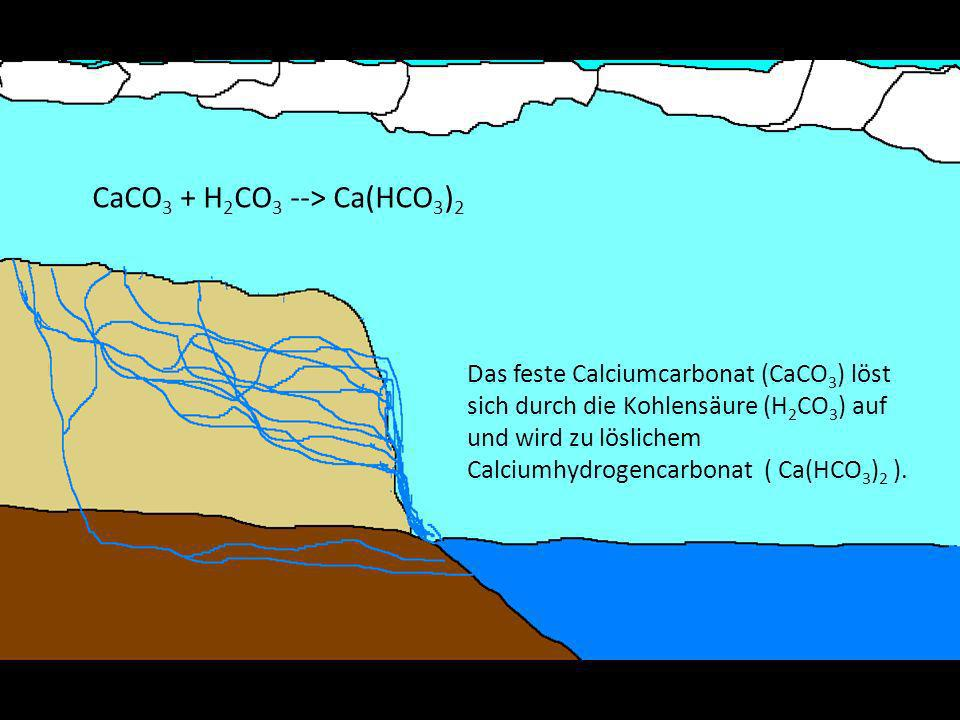 Das feste Calciumcarbonat (CaCO 3 ) löst sich durch die Kohlensäure (H 2 CO 3 ) auf und wird zu löslichem Calciumhydrogencarbonat ( Ca(HCO 3 ) 2 ).