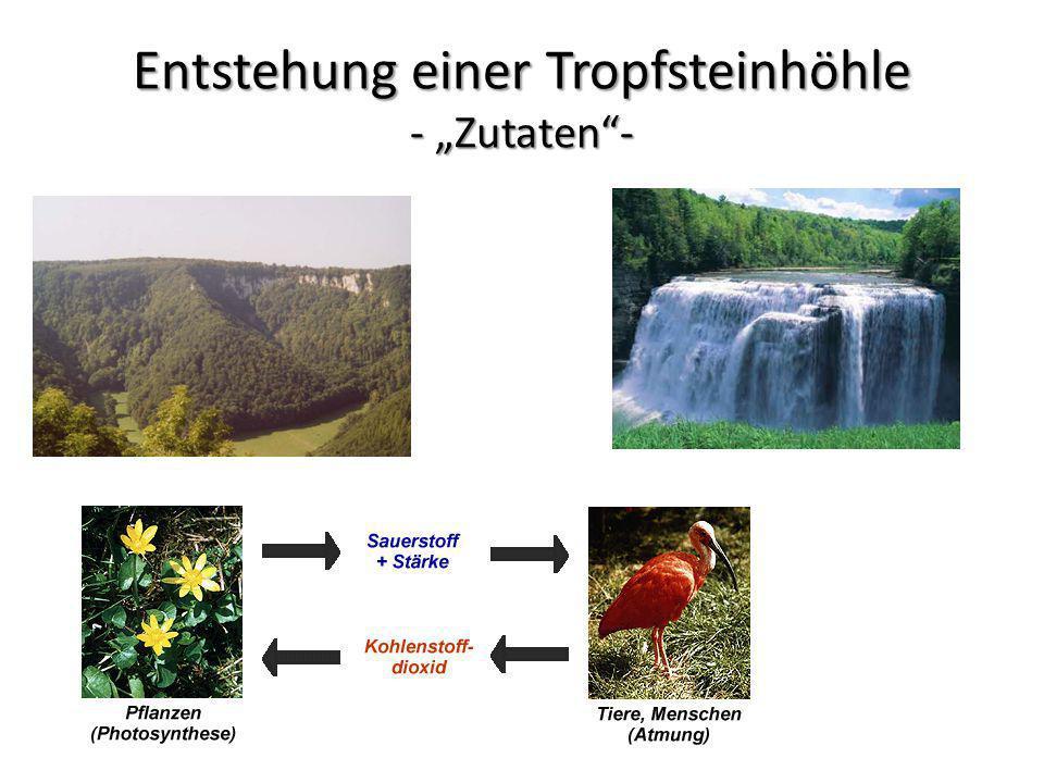 Entstehung einer Tropfsteinhöhle - Zutaten-