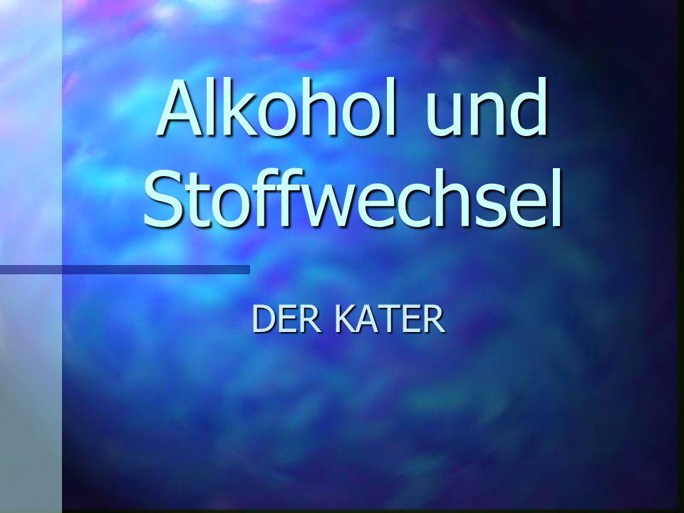 Alkohol und Stoffwechsel DER KATER