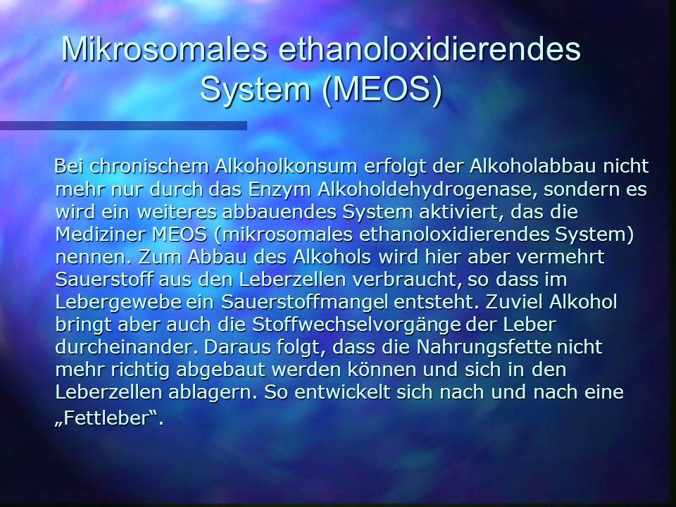 Mikrosomales ethanoloxidierendes System (MEOS) Bei chronischem Alkoholkonsum erfolgt der Alkoholabbau nicht mehr nur durch das Enzym Alkoholdehydrogenase, sondern es wird ein weiteres abbauendes System aktiviert, das die Mediziner MEOS (mikrosomales ethanoloxidierendes System) nennen.