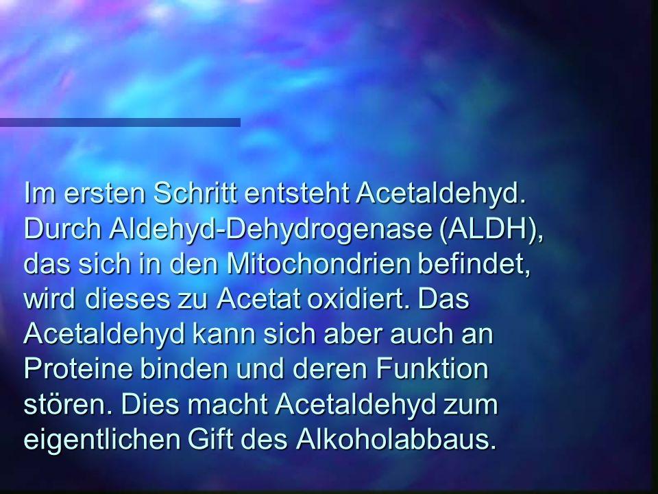 Im ersten Schritt entsteht Acetaldehyd. Durch Aldehyd-Dehydrogenase (ALDH), das sich in den Mitochondrien befindet, wird dieses zu Acetat oxidiert. Da