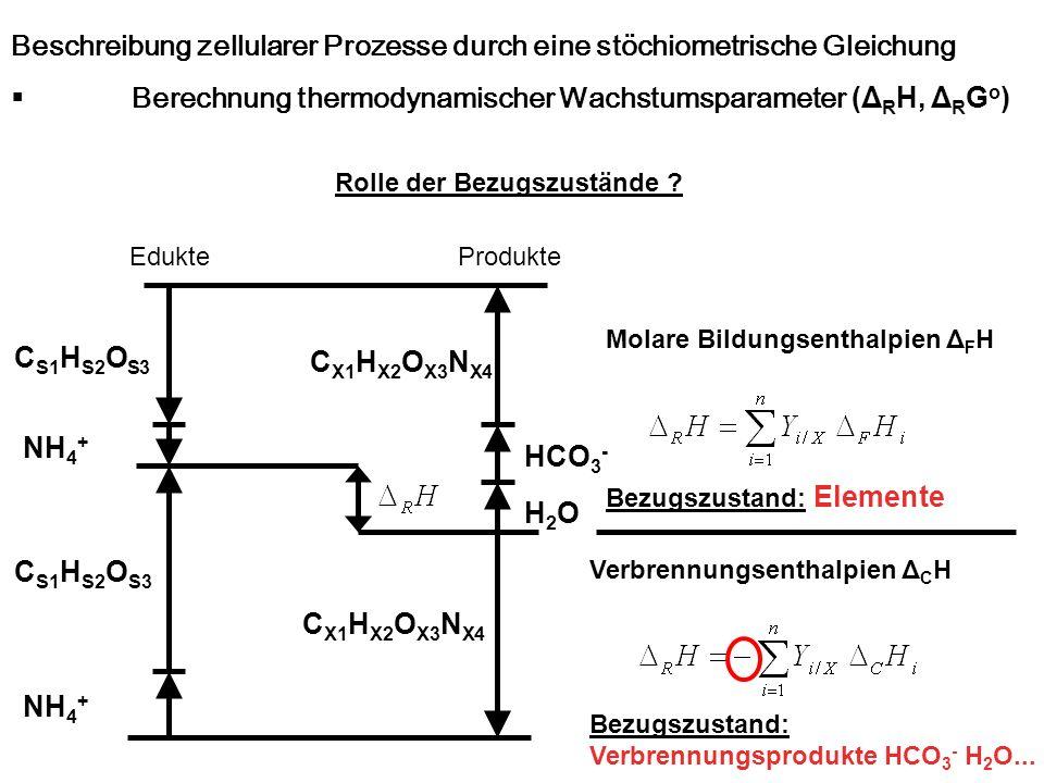 Beschreibung zellularer Prozesse durch eine stöchiometrische Gleichung Berechnung thermodynamischer Wachstumsparameter (Δ R H, Δ R G o ) Edukte C S1 H
