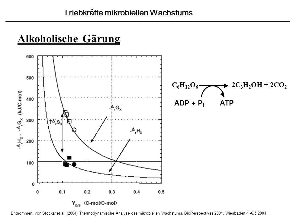 Alkoholische Gärung Triebkräfte mikrobiellen Wachstums Entnommen: von Stockar et al. (2004) Thermodynamische Analyse des mikrobiellen Wachstums. BioPe