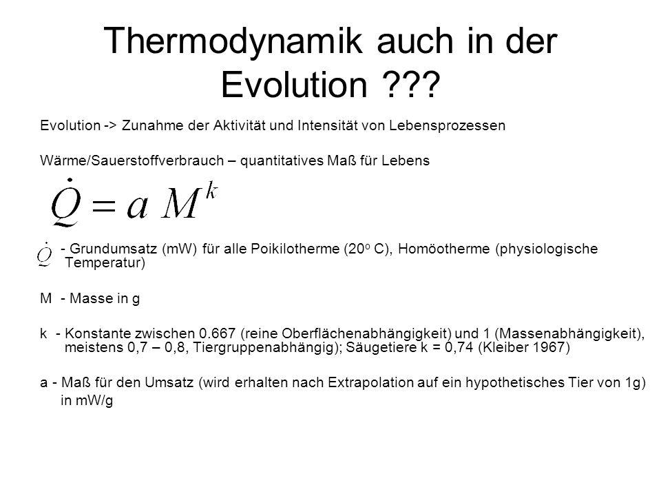 Thermodynamik auch in der Evolution ??? Evolution -> Zunahme der Aktivität und Intensität von Lebensprozessen Wärme/Sauerstoffverbrauch – quantitative