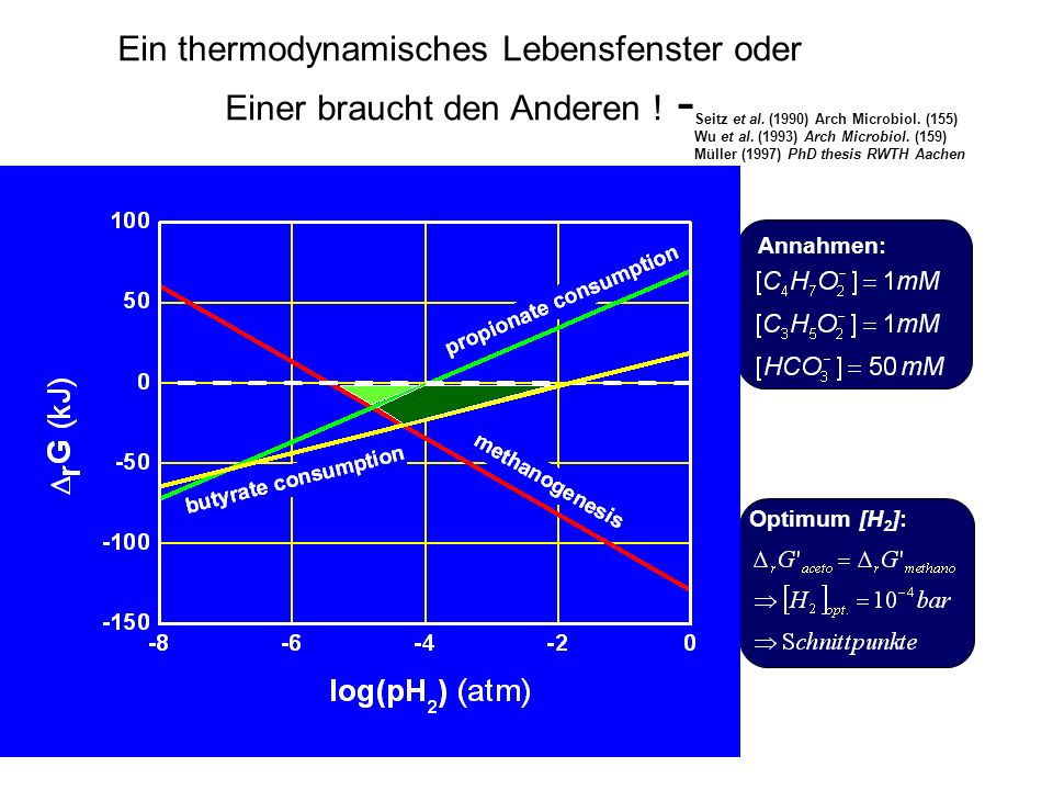 Ein thermodynamisches Lebensfenster oder Einer braucht den Anderen ! - Seitz et al. (1990) Arch Microbiol. (155) Wu et al. (1993) Arch Microbiol. (159
