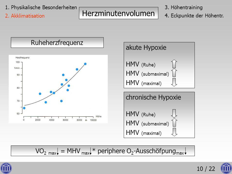 10 / 22 Ruheherzfrequenz akute Hypoxie HMV (Ruhe) HMV (submaximal) HMV (maximal) Herzminutenvolumen 1. Physikalische Besonderheiten 2. Akklimatisation