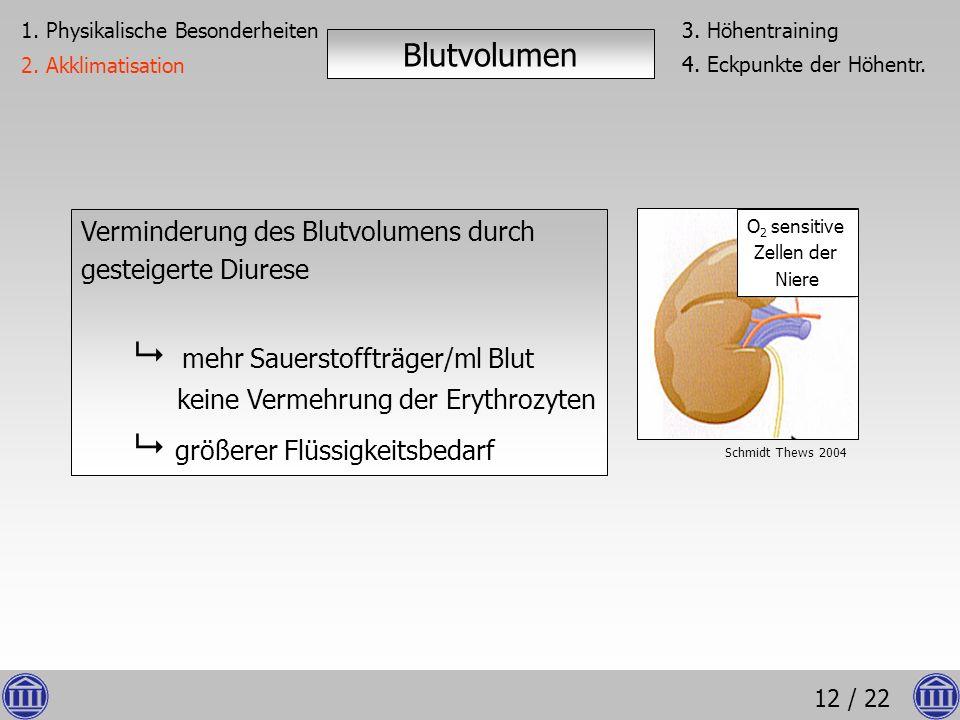 12 / 22 Verminderung des Blutvolumens durch gesteigerte Diurese mehr Sauerstoffträger/ml Blut keine Vermehrung der Erythrozyten größerer Flüssigkeitsb