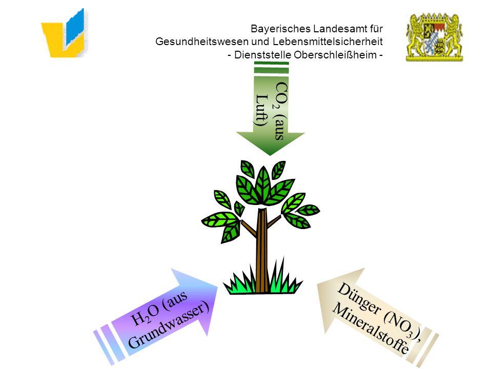 Bayerisches Landesamt für Gesundheitswesen und Lebensmittelsicherheit - Dienststelle Oberschleißheim -
