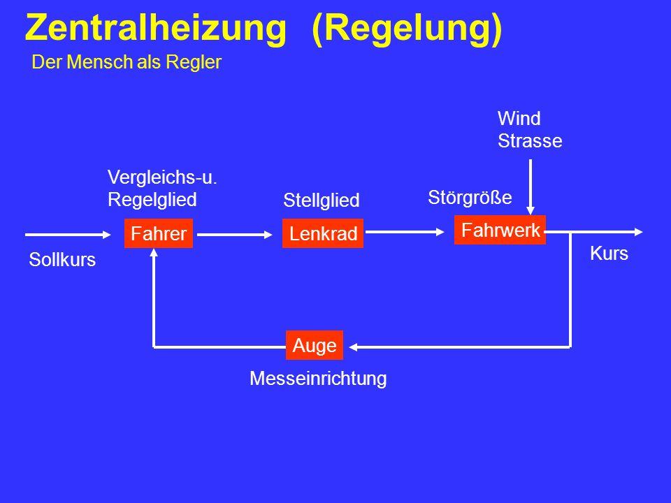 Zentralheizung (Regelung) Der Mensch als Regler FahrerLenkrad Fahrwerk Auge Sollkurs Vergleichs-u. Regelglied Stellglied Störgröße Kurs Messeinrichtun