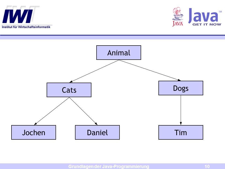 Grundlagen der Java-Programmierung10 Animal Cats Dogs DanielJochenTim