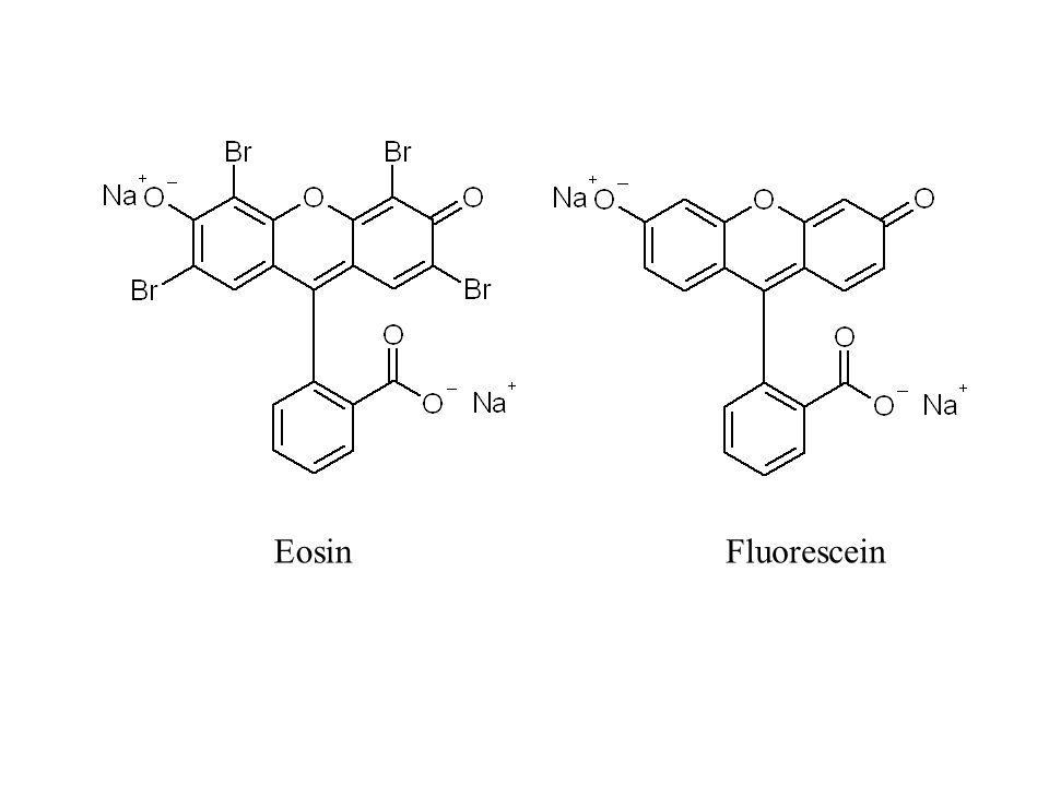 EosinFluorescein