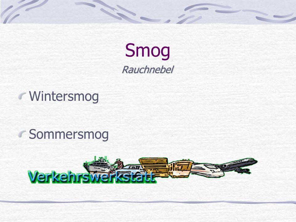 Smog Wintersmog Sommersmog Rauchnebel