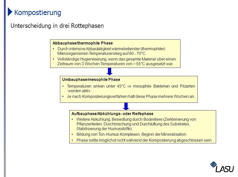 Unterscheidung in drei Rottephasen Abbauphase/thermophile Phase Durch intensive Abbautätigkeit wärmeliebender (thermophiler) Mikroorganismen Temperatu