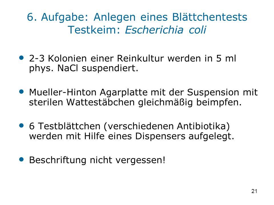 21 6. Aufgabe: Anlegen eines Blättchentests Testkeim: Escherichia coli 2-3 Kolonien einer Reinkultur werden in 5 ml phys. NaCl suspendiert. Mueller-Hi