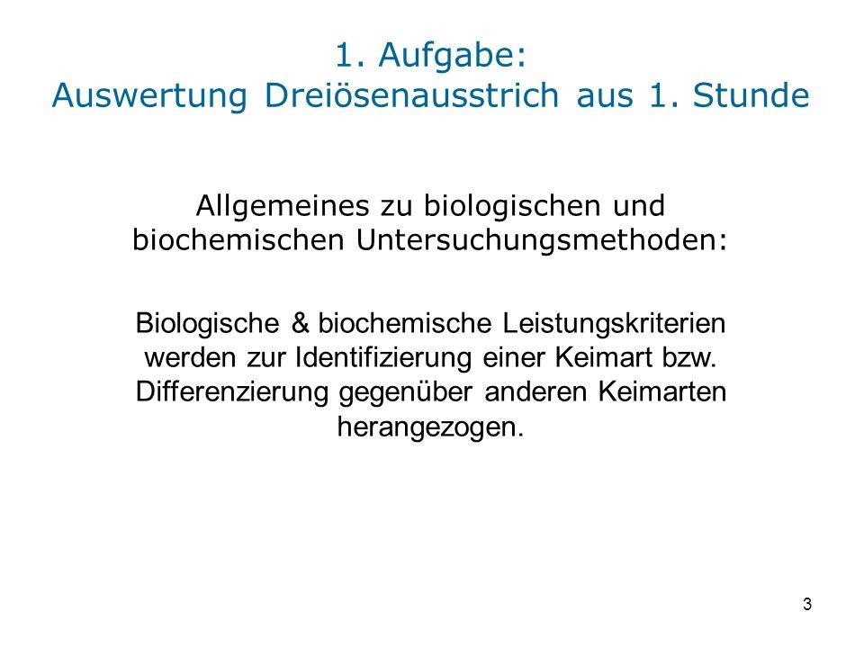 3 1. Aufgabe: Auswertung Dreiösenausstrich aus 1. Stunde Allgemeines zu biologischen und biochemischen Untersuchungsmethoden: Biologische & biochemisc