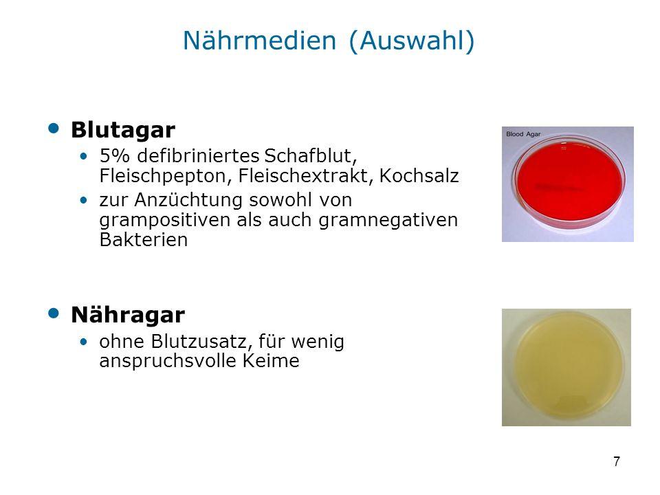 7 Nährmedien (Auswahl) Blutagar 5% defibriniertes Schafblut, Fleischpepton, Fleischextrakt, Kochsalz zur Anzüchtung sowohl von grampositiven als auch