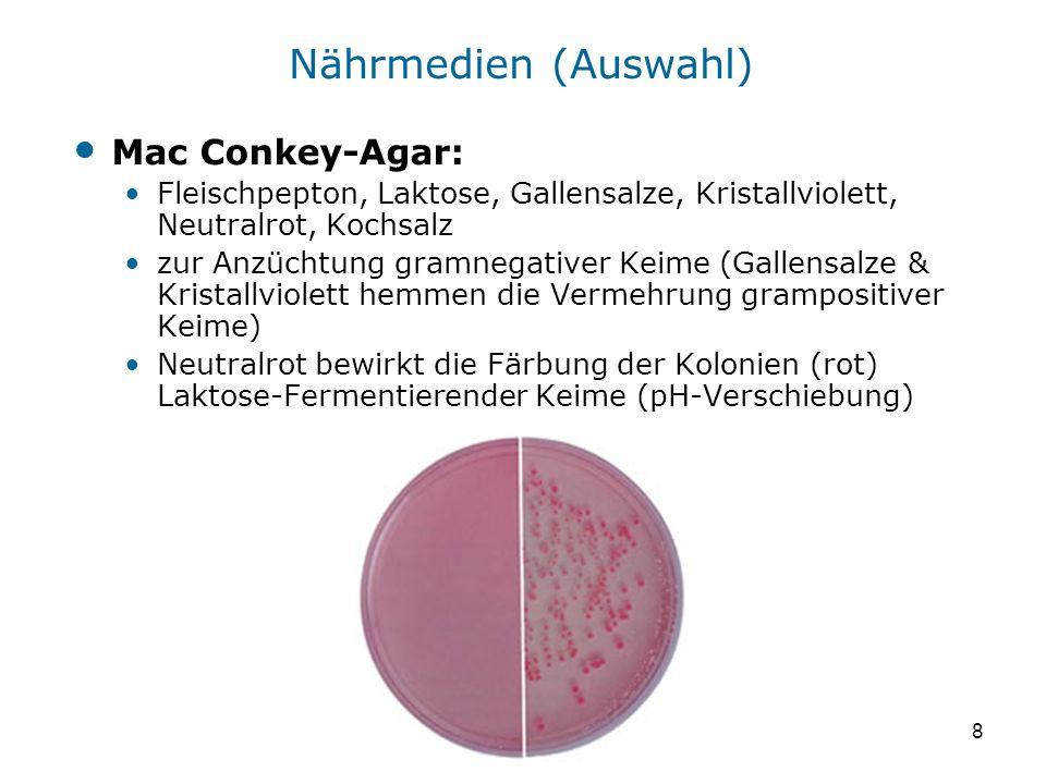 8 Mac Conkey-Agar: Fleischpepton, Laktose, Gallensalze, Kristallviolett, Neutralrot, Kochsalz zur Anzüchtung gramnegativer Keime (Gallensalze & Krista