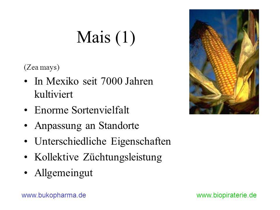 www.bukopharma.dewww.biopiraterie.de Mais (1) (Zea mays) In Mexiko seit 7000 Jahren kultiviert Enorme Sortenvielfalt Anpassung an Standorte Unterschie