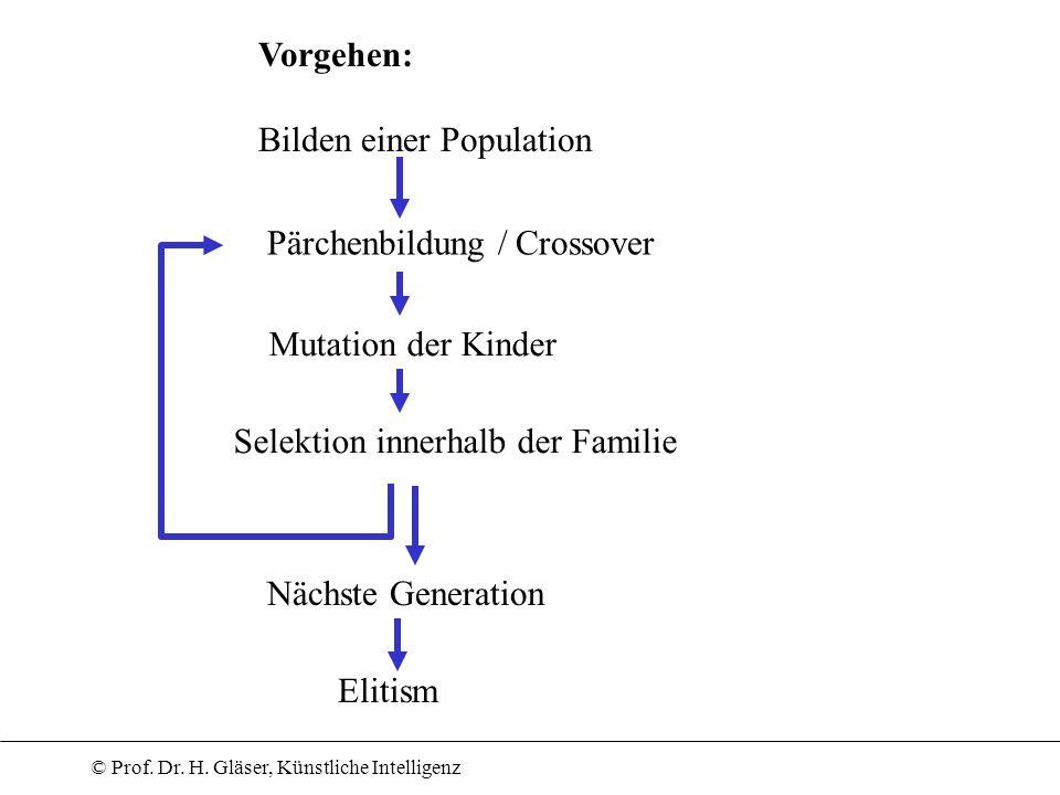 © Prof. Dr. H. Gläser, Künstliche Intelligenz Vorgehen: Bilden einer Population Pärchenbildung / Crossover Mutation der Kinder Selektion innerhalb der