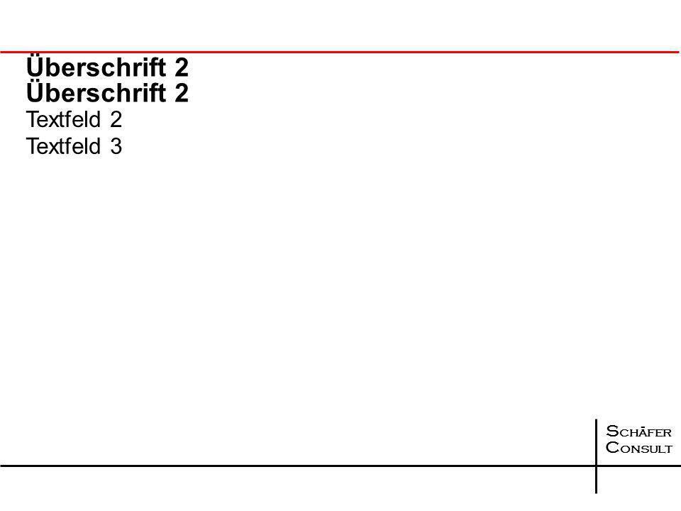 S chäfer C onsult Überschrift 2