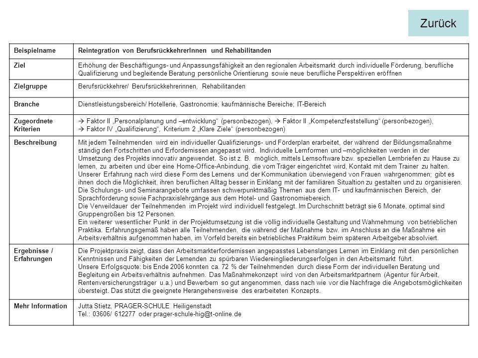 BeispielnameReintegration von BerufsrückkehrerInnen und Rehabilitanden ZielErhöhung der Beschäftigungs- und Anpassungsfähigkeit an den regionalen Arbe