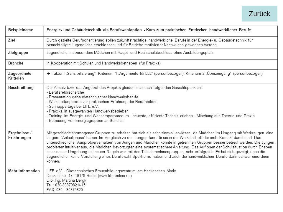 BeispielnameEnergie- und Gebäudetechnik als Berufswahloption - Kurs zum praktischen Entdecken handwerklicher Berufe ZielDurch gezielte Berufsorientierung sollen zukunftsträchtige, handwerkliche Berufe in der Energie- u.
