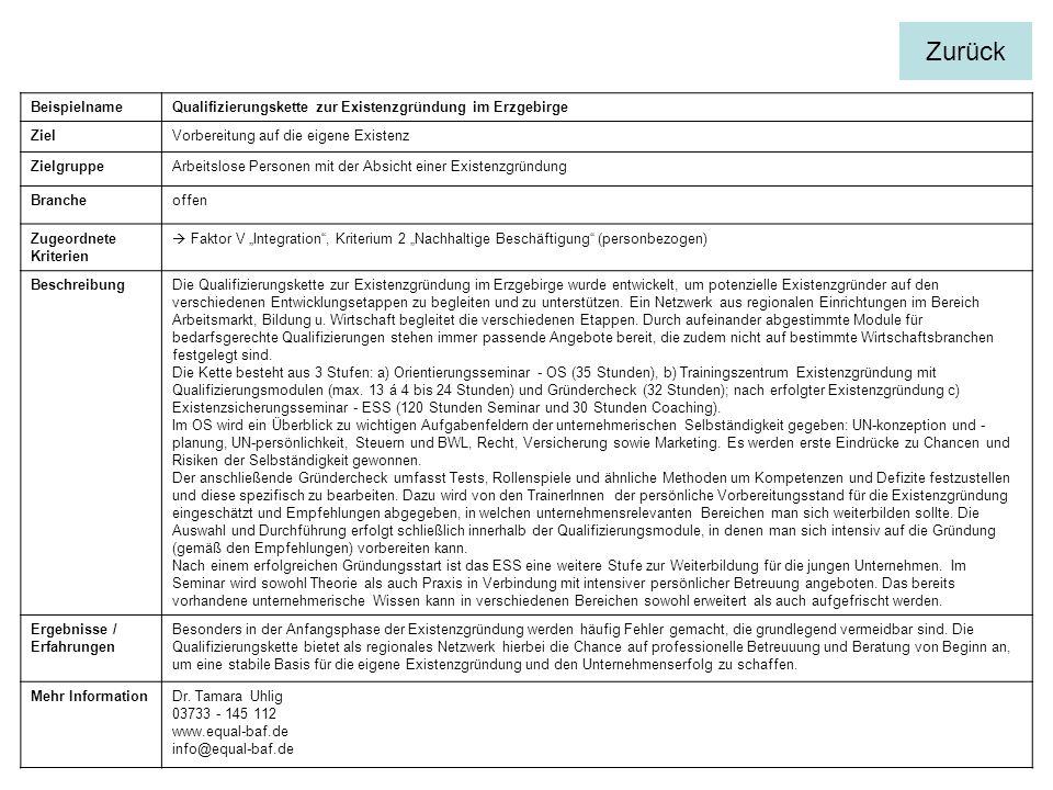 BeispielnameQualifizierungskette zur Existenzgründung im Erzgebirge ZielVorbereitung auf die eigene Existenz ZielgruppeArbeitslose Personen mit der Ab