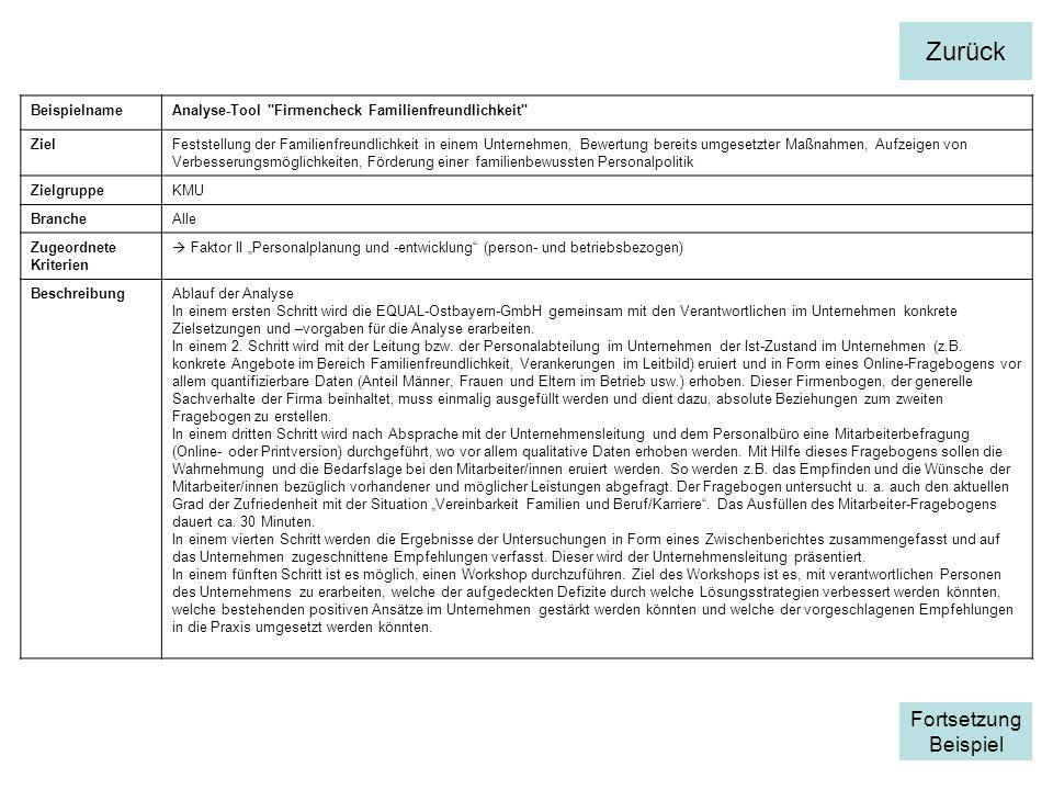 BeispielnameAnalyse-Tool Firmencheck Familienfreundlichkeit ZielFeststellung der Familienfreundlichkeit in einem Unternehmen, Bewertung bereits umgesetzter Maßnahmen, Aufzeigen von Verbesserungsmöglichkeiten, Förderung einer familienbewussten Personalpolitik ZielgruppeKMU BrancheAlle Zugeordnete Kriterien Faktor II Personalplanung und -entwicklung (person- und betriebsbezogen) BeschreibungAblauf der Analyse In einem ersten Schritt wird die EQUAL-Ostbayern-GmbH gemeinsam mit den Verantwortlichen im Unternehmen konkrete Zielsetzungen und –vorgaben für die Analyse erarbeiten.
