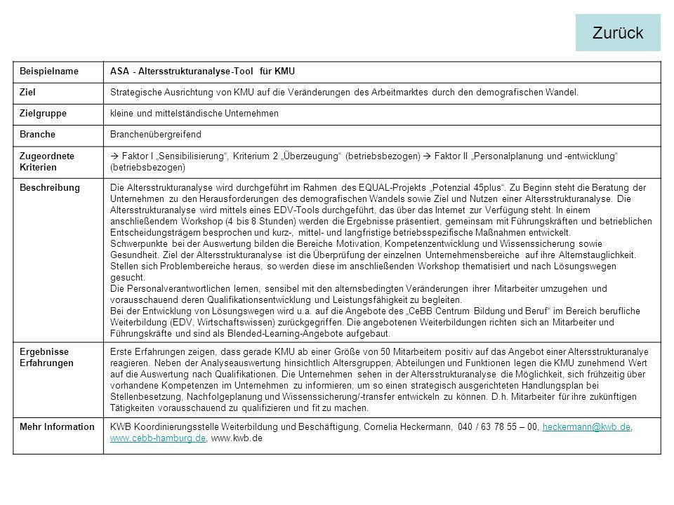 BeispielnameASA - Altersstrukturanalyse-Tool für KMU ZielStrategische Ausrichtung von KMU auf die Veränderungen des Arbeitmarktes durch den demografis