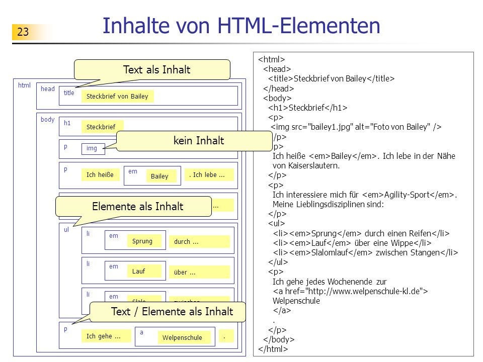 23 Inhalte von HTML-Elementen html head title Steckbrief von Bailey body h1 p img p Ich heiße em Bailey ul li. Ich lebe... p Ich int... em Agilit....