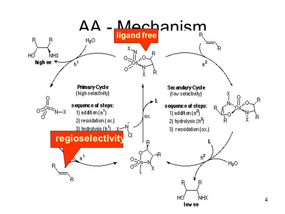 Metallorganische Chemie5 AA - Nitrogen Sources amino-heterocycles While the sulfonamide variant is easier to run, the ee s are generally lower than the carbamate and amide variants.