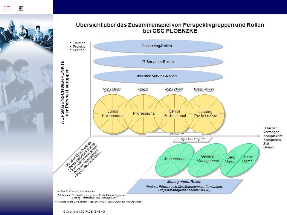 1 4 © Copyright CSC PLOENZKE AG AUFGABENSCHWERPUNKTE der Perspektivgruppen Consulting-Rollen Fläche, Vermögen, Komplexität, Kompetenz, Zeit, Gehalt Pr