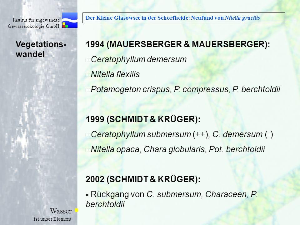 Institut für angewandte Gewässerökologie GmbH Wasser ist unser Element Der Kleine Glasowsee in der Schorfheide: Neufund von Nitella gracilis 1994 (MAU