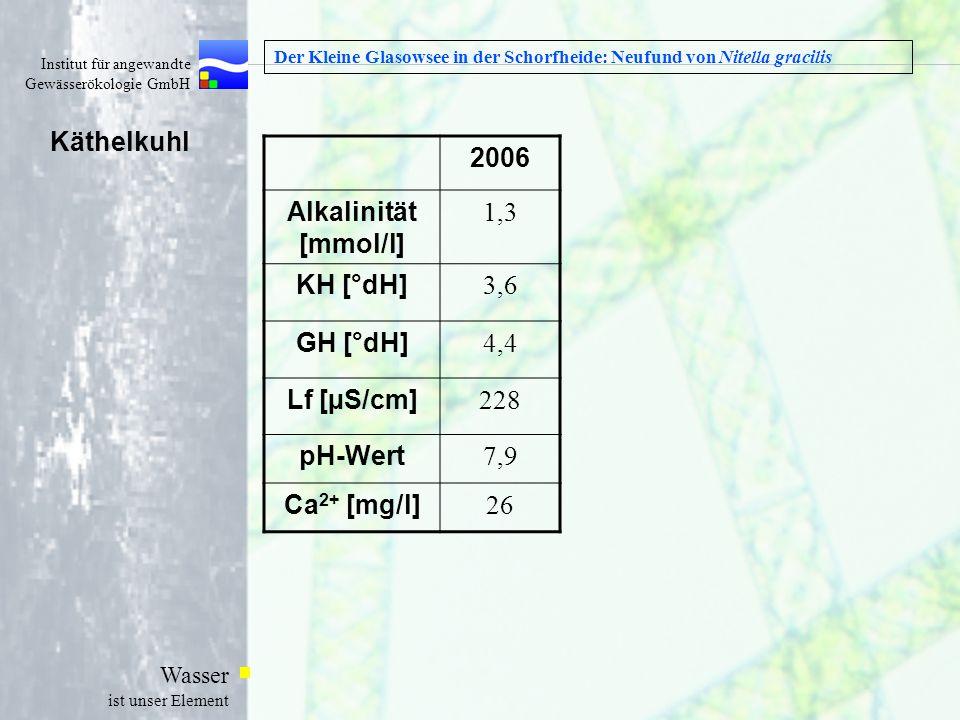 Institut für angewandte Gewässerökologie GmbH Wasser ist unser Element Der Kleine Glasowsee in der Schorfheide: Neufund von Nitella gracilis Käthelkuh
