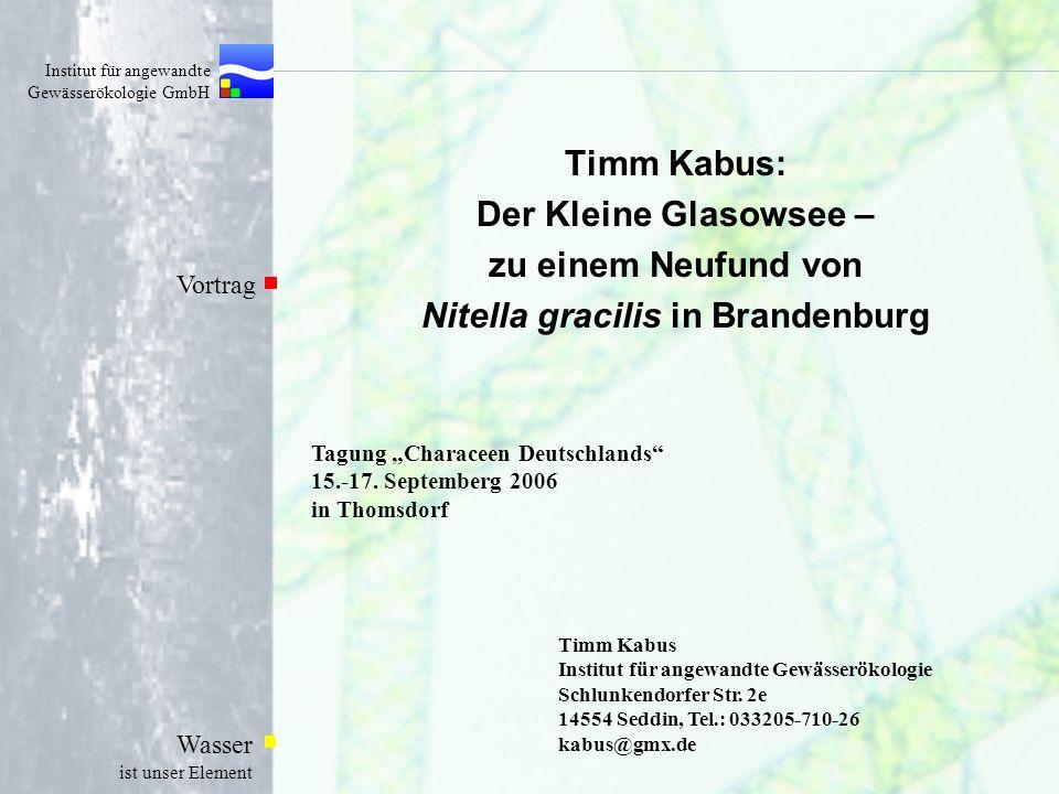 Institut für angewandte Gewässerökologie GmbH Wasser ist unser Element Timm Kabus: Der Kleine Glasowsee – zu einem Neufund von Nitella gracilis in Bra