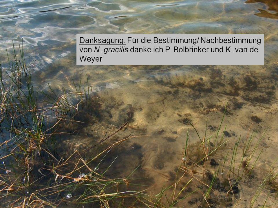 Institut für angewandte Gewässerökologie GmbH Wasser ist unser Element Dystrophe Seen in Brandenburg Danksagung: Für die Bestimmung/ Nachbestimmung vo