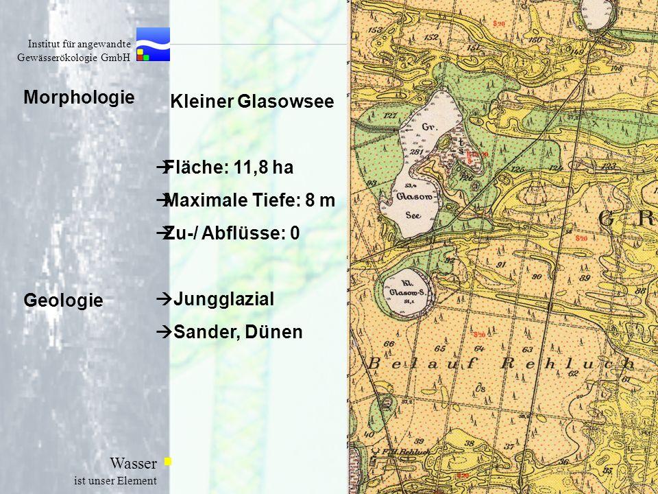Institut für angewandte Gewässerökologie GmbH Wasser ist unser Element Morphologie Kleiner Glasowsee Fläche: 11,8 ha Maximale Tiefe: 8 m Zu-/ Abflüsse
