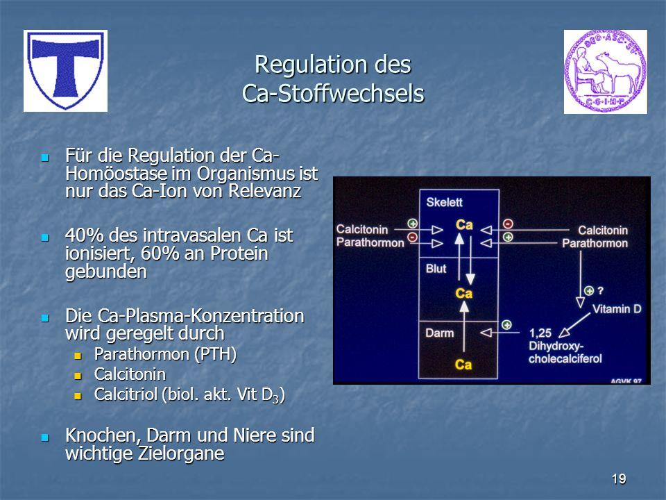 19 Regulation des Ca-Stoffwechsels Für die Regulation der Ca- Homöostase im Organismus ist nur das Ca-Ion von Relevanz Für die Regulation der Ca- Homö