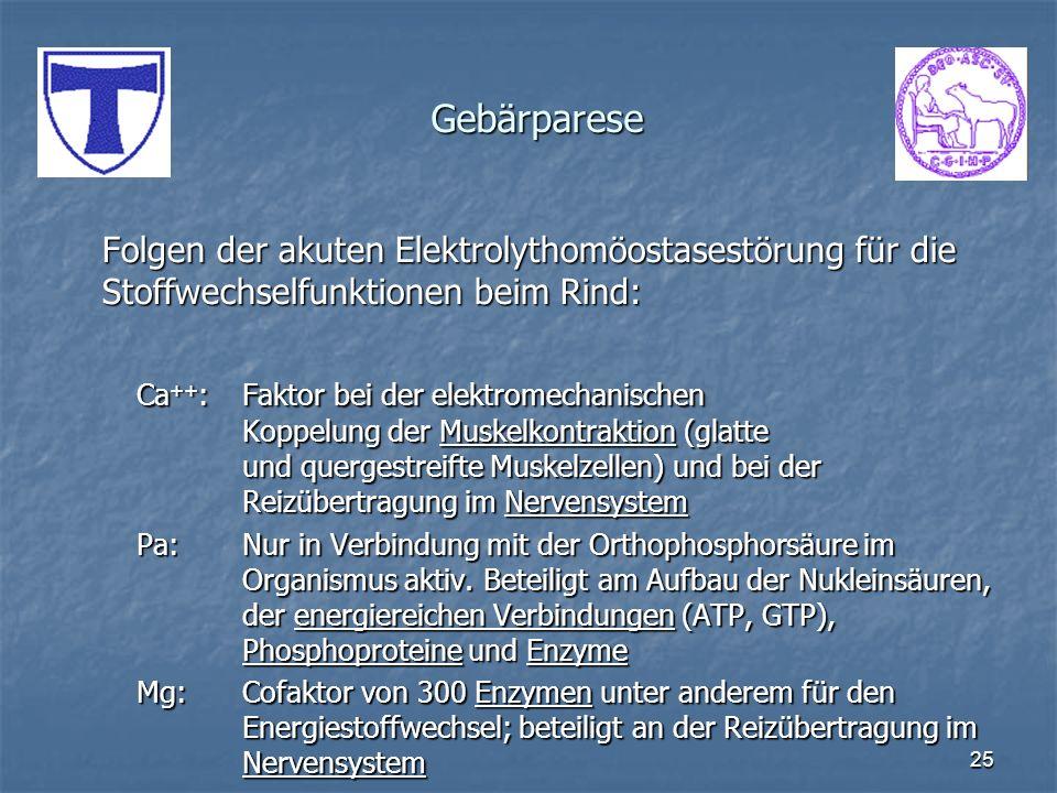 25 Gebärparese Folgen der akuten Elektrolythomöostasestörung für die Stoffwechselfunktionen beim Rind: Ca ++ :Faktor bei der elektromechanischen Koppe