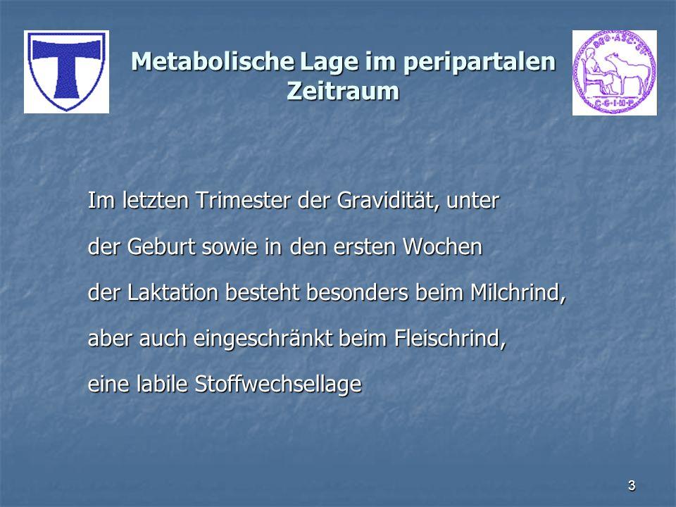 3 Metabolische Lage im peripartalen Zeitraum Im letzten Trimester der Gravidität, unter der Geburt sowie in den ersten Wochen der Laktation besteht be