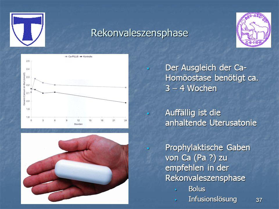 37 Rekonvaleszensphase Der Ausgleich der Ca- Homöostase benötigt ca. 3 – 4 Wochen Der Ausgleich der Ca- Homöostase benötigt ca. 3 – 4 Wochen Auffällig