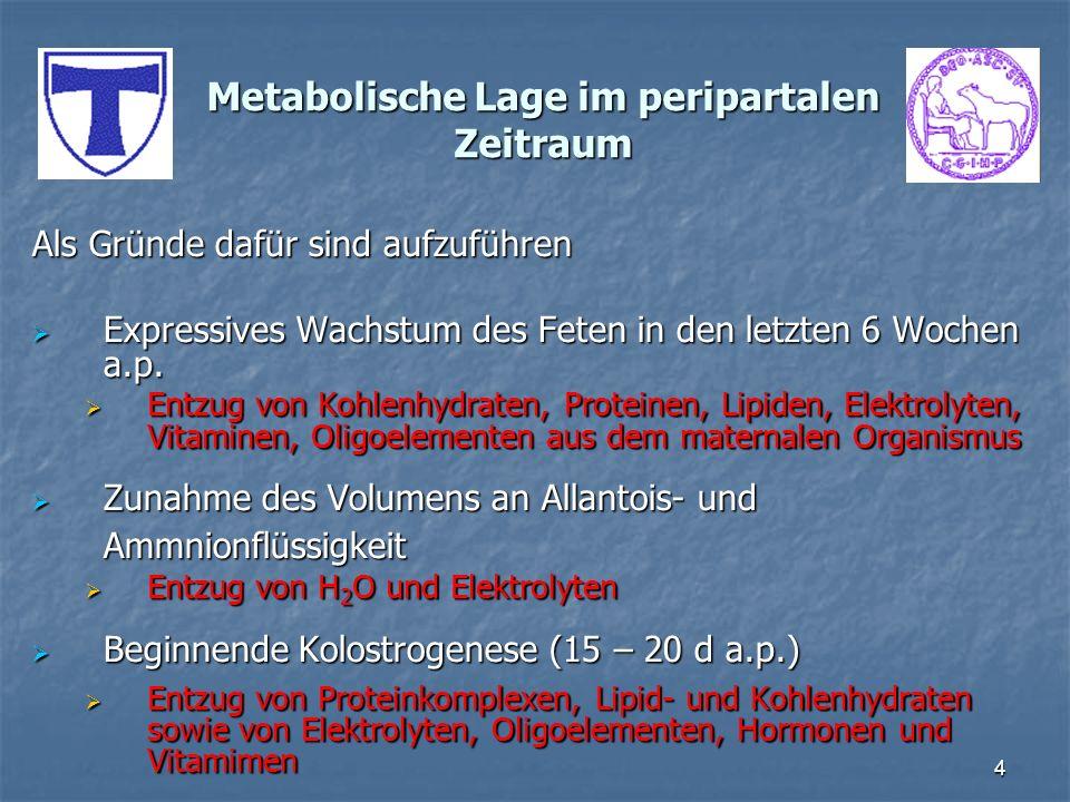 4 Metabolische Lage im peripartalen Zeitraum Als Gründe dafür sind aufzuführen Expressives Wachstum des Feten in den letzten 6 Wochen a.p. Expressives