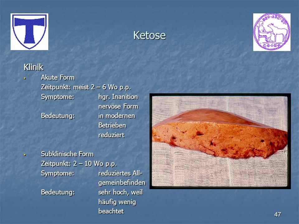47 Ketose Klinik Akute Form Akute Form Zeitpunkt: meist 2 – 6 Wo p.p. Symptome:hgr. Inanition nervöse Form Bedeutung:in modernen Betriebenreduziert Su