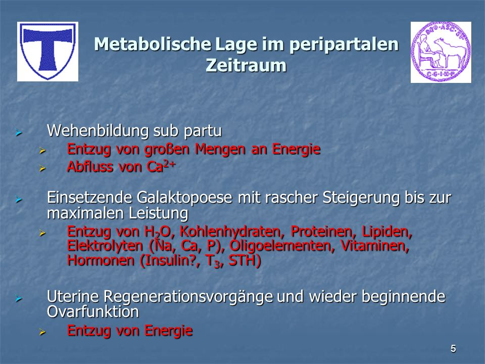 5 Metabolische Lage im peripartalen Zeitraum Wehenbildung sub partu Wehenbildung sub partu Entzug von großen Mengen an Energie Entzug von großen Menge