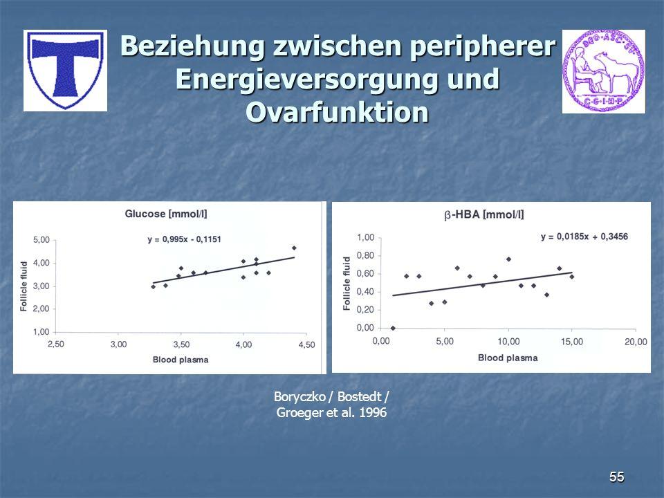 55 Beziehung zwischen peripherer Energieversorgung und Ovarfunktion Boryczko / Bostedt / Groeger et al. 1996