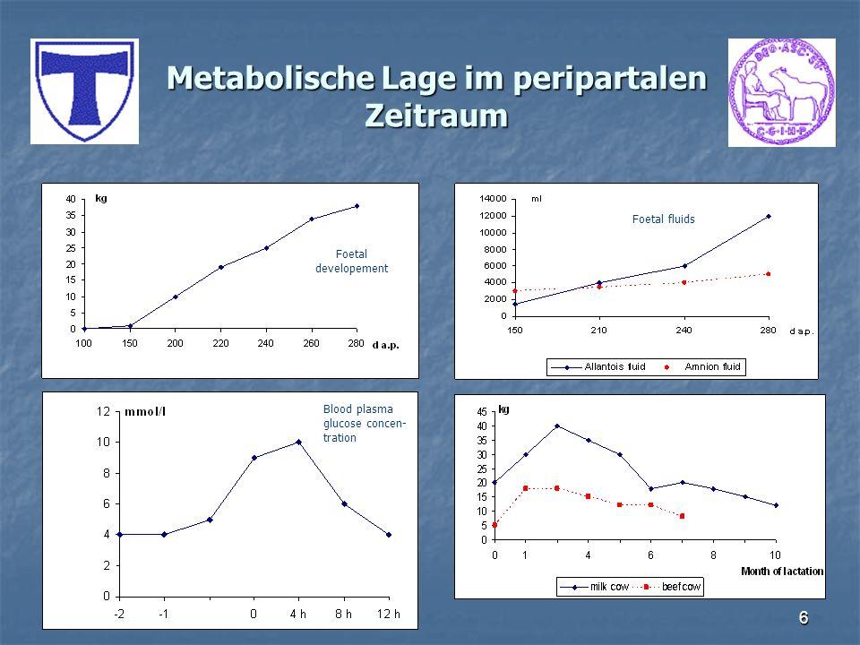 6 Metabolische Lage im peripartalen Zeitraum Foetal developement Blood plasma glucose concen- tration Foetal fluids
