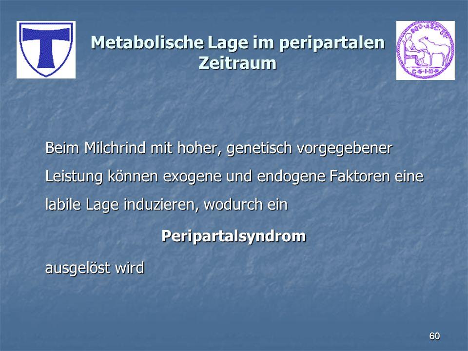 60 Metabolische Lage im peripartalen Zeitraum Beim Milchrind mit hoher, genetisch vorgegebener Leistung können exogene und endogene Faktoren eine labi