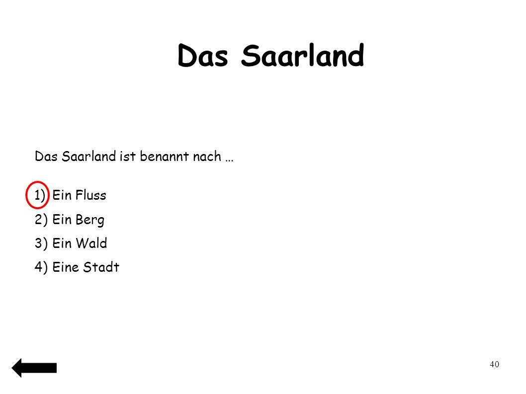 Das Saarland 41