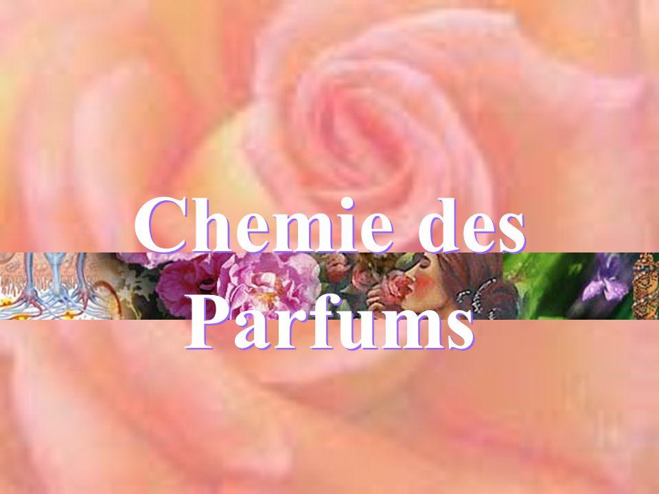 Chemie des Parfums